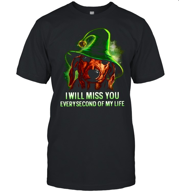 I Will Miss You Everysecond Of My Life shirt
