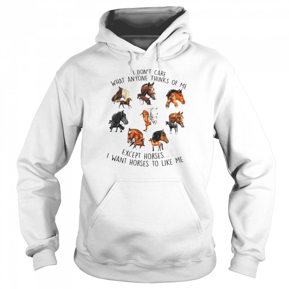 I Don't Care What Anyone Thinks Of Me Except Horses I Want Horses To Like Me T-shirt Unisex Hoodie